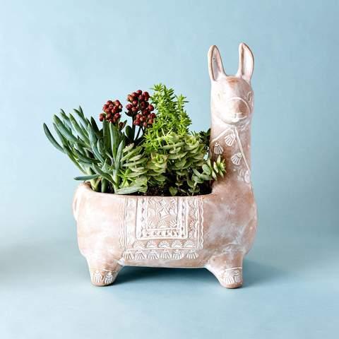 Whitewashed Terracotta Llama Planter - GlobeIn